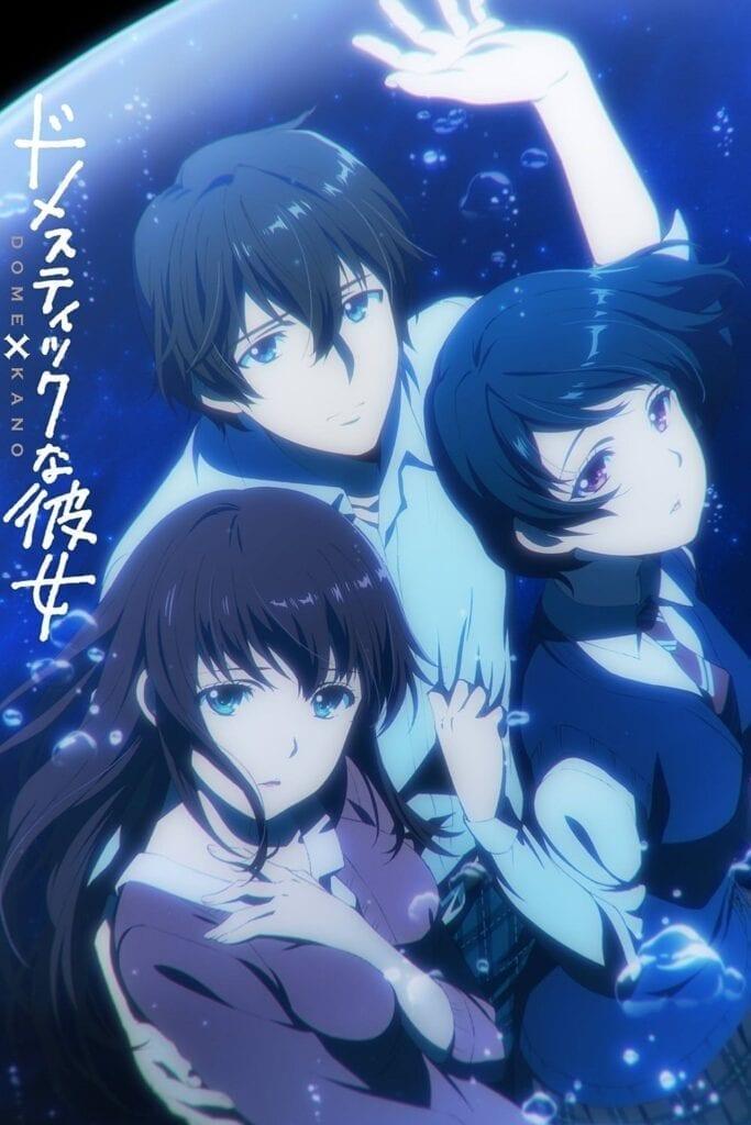 Descargar Domestic na Kanojo manga