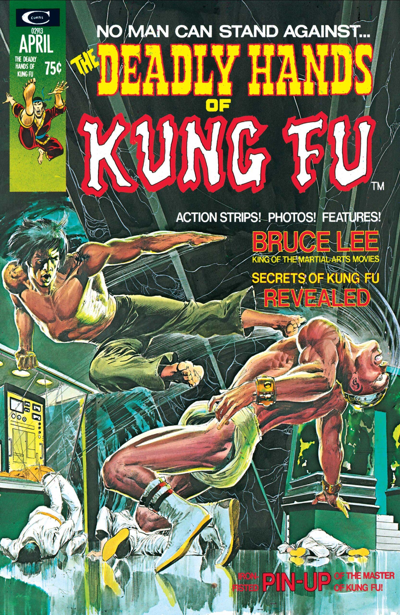 Descargar Deadly Hands of Kung Fu Volumen 1 comic scaled